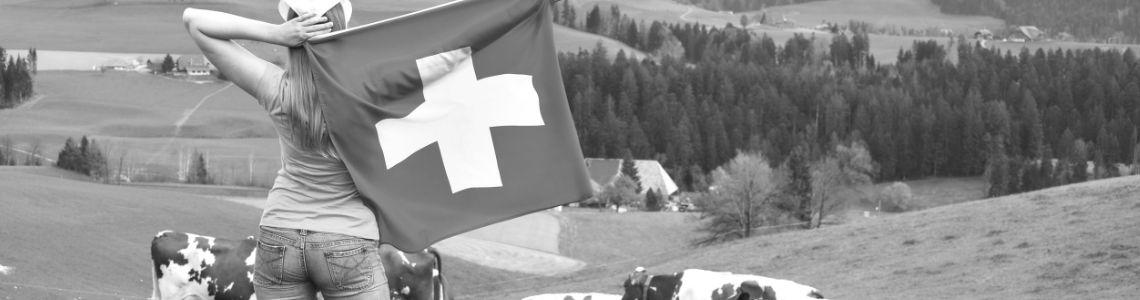 Lieferung in die Schweiz